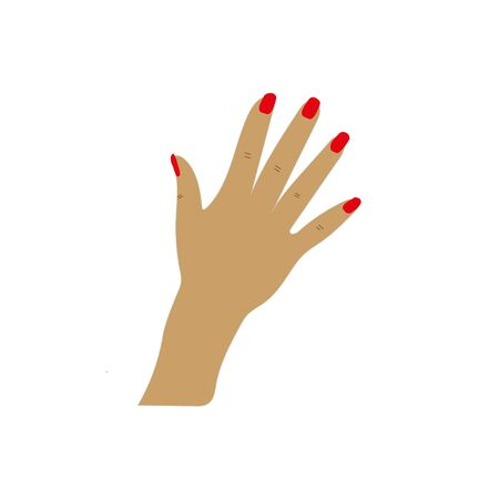 Woman hand and manicure red varnish whitw background. eps 10 向量圖像