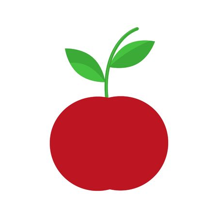 Red apple illustration isolated on white background