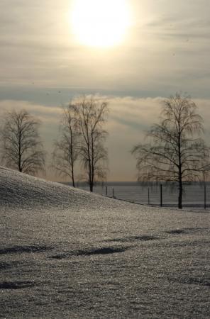 Landscape winter beach Stock Photo