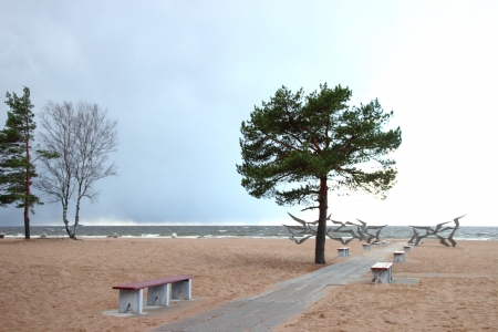 Autumn beach in St. Petersburg.  Gulf of Finland