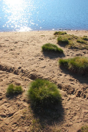 islets lawn on the beach at the lake Stock Photo