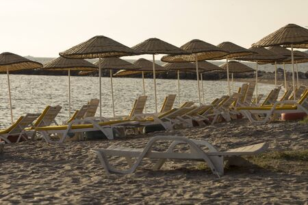 An empty sandy beach with yellow mattress tanning beds and straw umbrellas at evening in an image alternating between shades of sand and yellow. Stockfoto