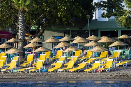 Front landscape image of a sandy beach full of empty tanning beds with yellow mattresses accompanied by straw umbrellas. In the background are empty bamboo chairs and tables under palm trees and magnolia trees.