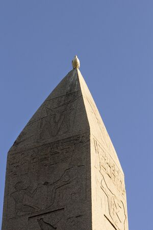 Brought to the Constantinople at 4th century A.D., Obelisk of Theodosius had a long journey from Egypt via Athens. A seagull sits comfortably at the sharp tip of the obelisk.