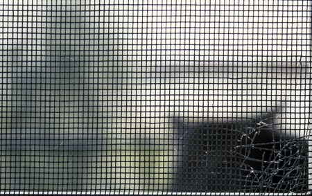 Close up of a window net for flies, destroyed by a suspect shadow seen in the background.