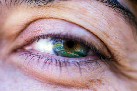 Eye sight and nutrition. Fish swimming in woman's eye in double exposure image.