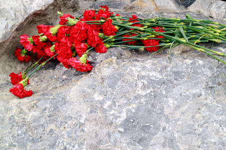 flowers red carnations lying on the stone, flowers in memory of the victims