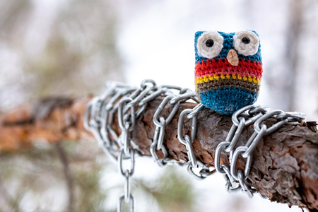 close-up of a knitted owl made of wool on a pine branch which is wrapped in a chain, a trunk and a tree branch