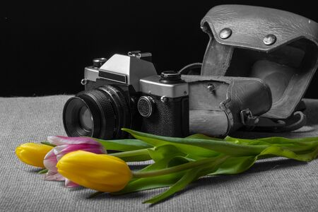 photo camera old type film on a cloth with flowers, camera black and white flowers no 写真素材
