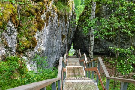 metal ladder for descending down among the rocks in the forest. stairs for walking in the natural Park deer streams