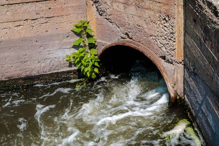 a stream of water flowing out of a pipe in a concrete wall. current and turbulence