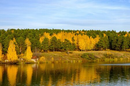 a large river in which the autumn mixed forest is reflected. forest and blue sky in autumn landscape