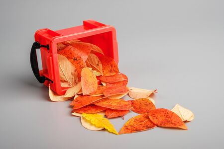 autumn leaves fall out of a plastic container. red container on a grey table Imagens - 148098365
