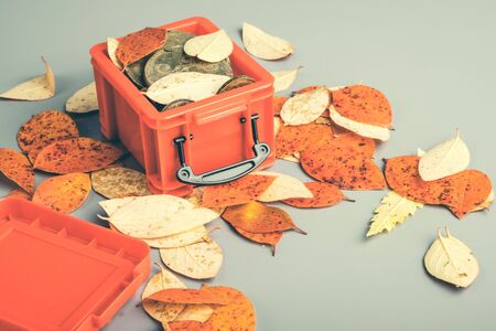 Autumn leaves red and yellow are scattered on a gray table near a red open container. leaf storage container children's toy