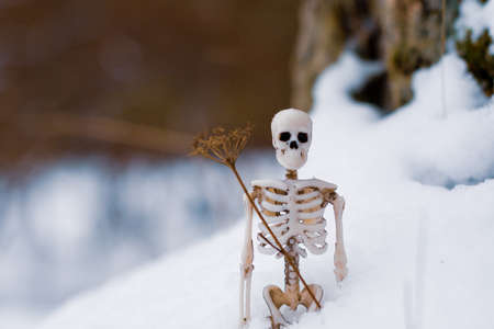 human skeleton in the snow against the background of a winter forest. concept of comparing winter and death