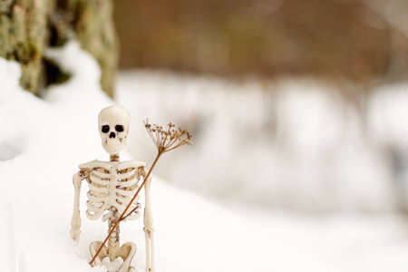 a human skeleton is standing in the snow next to a dry blade of grass. the coming of winter is like death 版權商用圖片