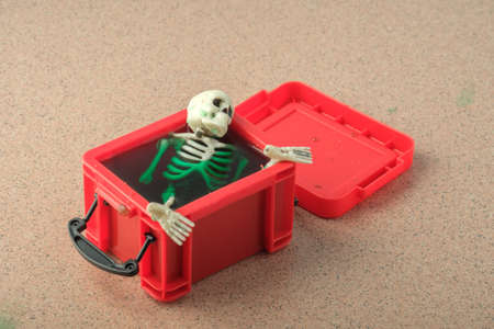 the skull and other parts of the skeleton are immersed in green liquid in a red plastic container. strange find Stok Fotoğraf