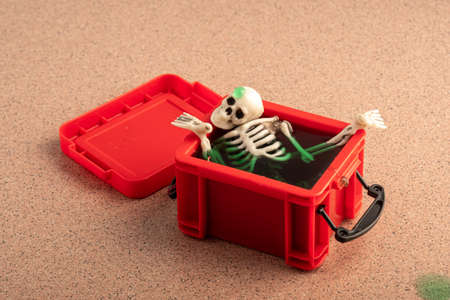 the skull and other parts of the skeleton are placed in a green liquid in a red plastic container. opened the old box Stok Fotoğraf