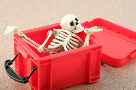 bones and parts of the human skeleton are stacked in a red box. played in a box