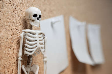 the human skeleton on the left side is a sticker to remind you of business. to-do list before retiring
