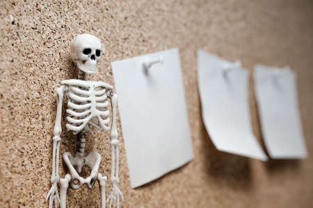 in the foreground, a plastic skeleton against the background of leaves with lists of cases that go into the distance.