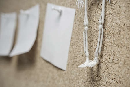 skeleton legs and stickers glued to the surface. posthumous notes 版權商用圖片