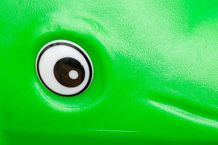oval-shaped toy eye on a green surface. one eye look
