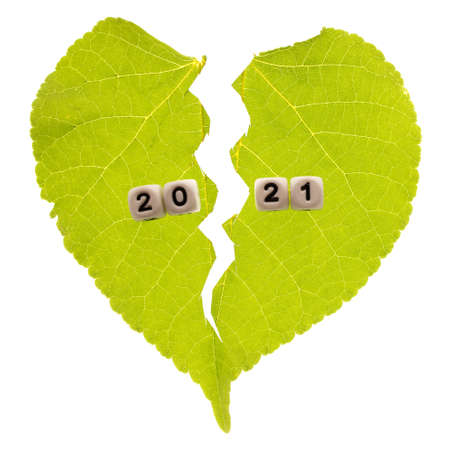 isolated torn leaf of a plant with cubes on which the numbers 2021. torn year