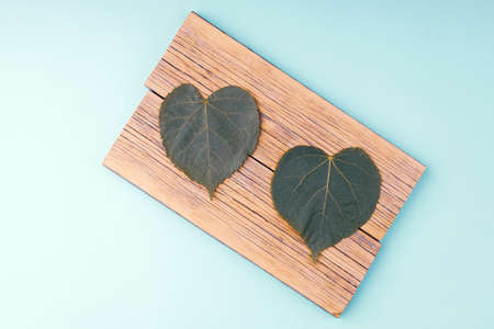 a diagonal of two planks on which there are two leaves of wood. background turquoise Standard-Bild