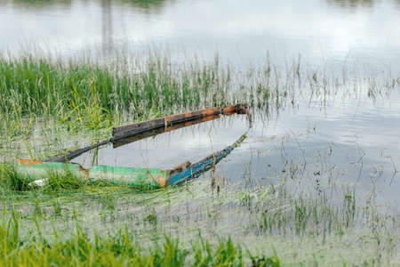 sunken boat in a pond in the summer. the concept of the transience of time 免版税图像