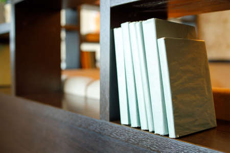 books in a blue cover on a shelf in a room, books for decoration 免版税图像