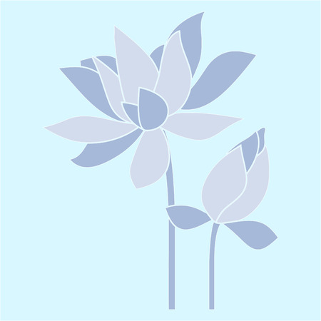 Vector flowers. Water lily, lotus.