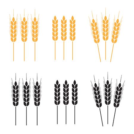 sheaf: Wheat ears icon set. Agricultural symbols on white background. Design elements for bread packaging. Vector illustration. Illustration
