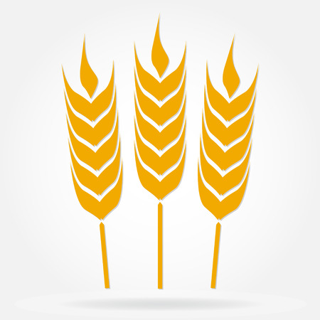 Wheat ears or rice icon. Agricultural symbol isolated on white background. Design element for bread packaging. Vector illustration.