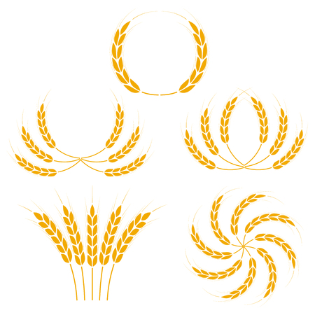 Wheat ears or rice icons set