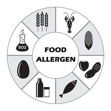 Food allergen icons set isolated on white background. Infographics template. Vector illustration.