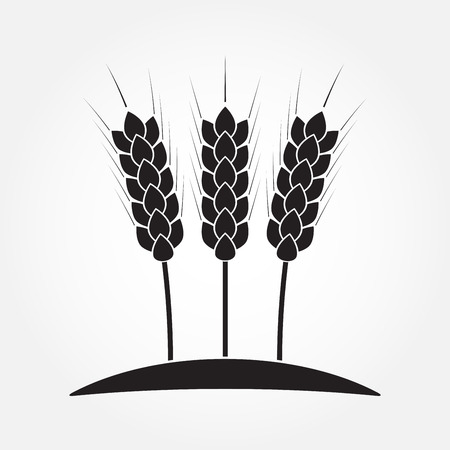 Wheat ears or rice icon. Agricultural and crop symbols isolated on white background. Design element for bread packaging. Vector illustration.
