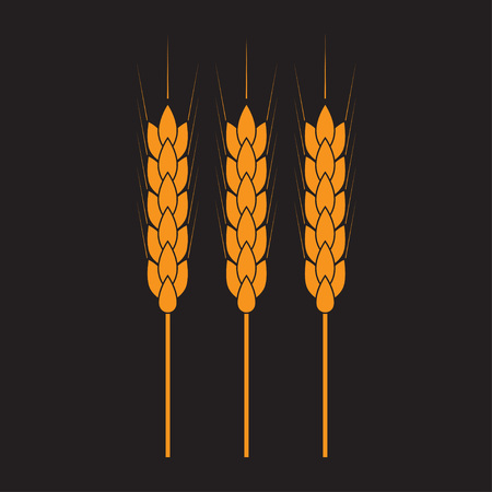 Wheat ears or rice icon. Crop symbol. Design element for bread packaging. Vector illustration.