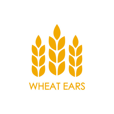 Wheat ears or rice icon. Crop, barley or rye symbol isolated on white background. Design element for beer Vector illustration.