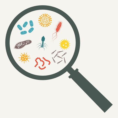 Virus and bacteria with Magnifying glass. Viruses and bacteria icon set. Colorful vector illustration.