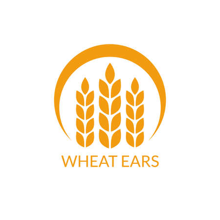 Wheat ears logo. Rye icon. Vector illustration.
