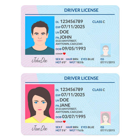Driver license or ID card with man and woman photo. Identification document template. Vector illustration.