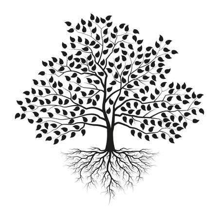 Tree with roots and leaves. Black silhouette. Vector illustration. Ilustracja