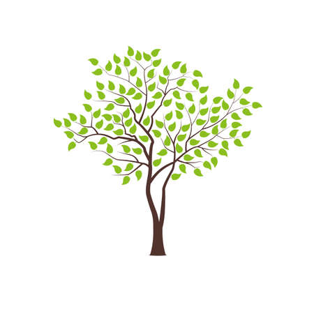 Tree with green foliage. Landscape design, nature, forest of garden symbol. Vector illustration. Ilustração