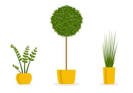 Plants in pots. Houseplant icon set. Indoor green plants. Vector illustration.