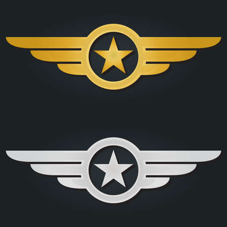 Star with wings. Military and Army winged badges. Golden and Silver Aviation emblems. Vector illustration. Çizim