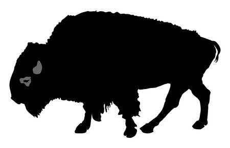 corrida: vector silhouette of the Buffalo isolated on white background. Illustration