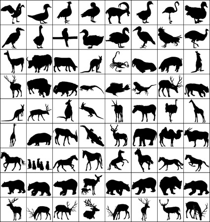 Vector Big Set of Animals Silhouettes. Mammals, Reptiles, Amphibia, Birds, Bats and other. Zoo animals collection - vector silhouette. Stock Illustratie