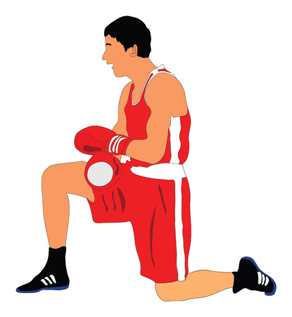 Boxer in ring vector illustration isolated on white background. Knockout situation. Illustration