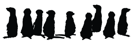 mongoose: Meerkats family in different postures vector silhouette illustration. Illustration